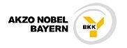 BKK Akzo Nobel Bayern, Erlenbach